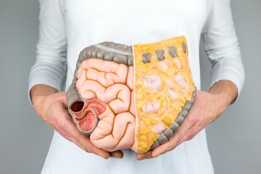 Távolítsa el a zsírokat a hasról és az oldalról szavakkal - gyors és hatékony módon