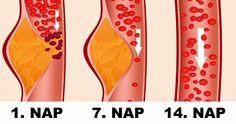 2 hét alatt 8 kiló mínusz: próbáld ki a fehérjediétát - mintaétrenddel! | vekettomotor.hu