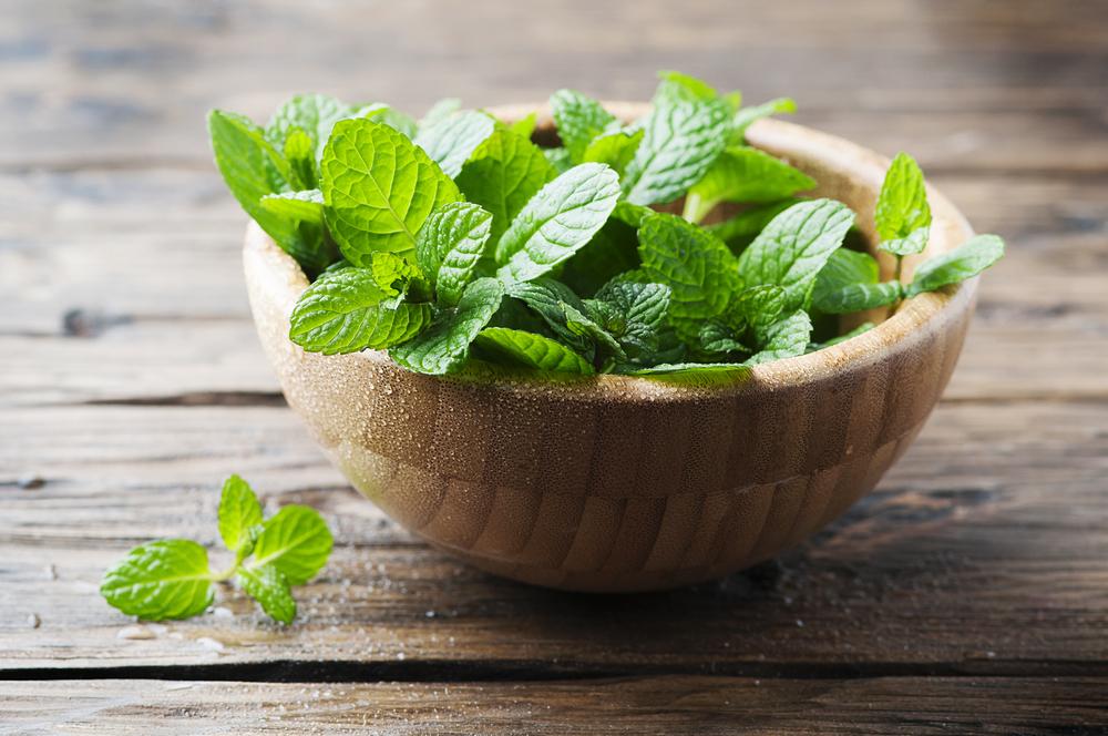 Fűszernövények, amik segítik az emésztést | vekettomotor.hu