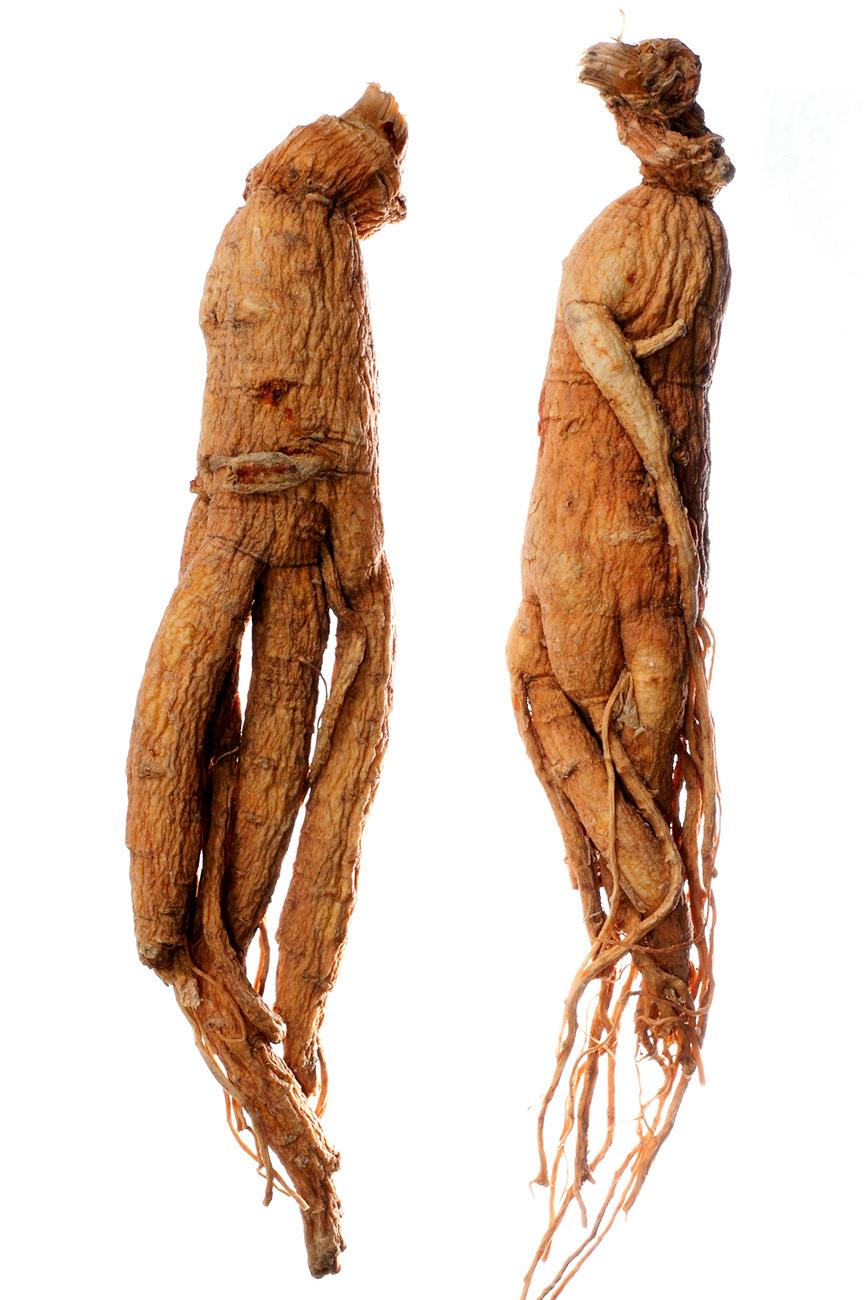 keleti gyógynövények a fogyáshoz segít a testzsír elégetésében