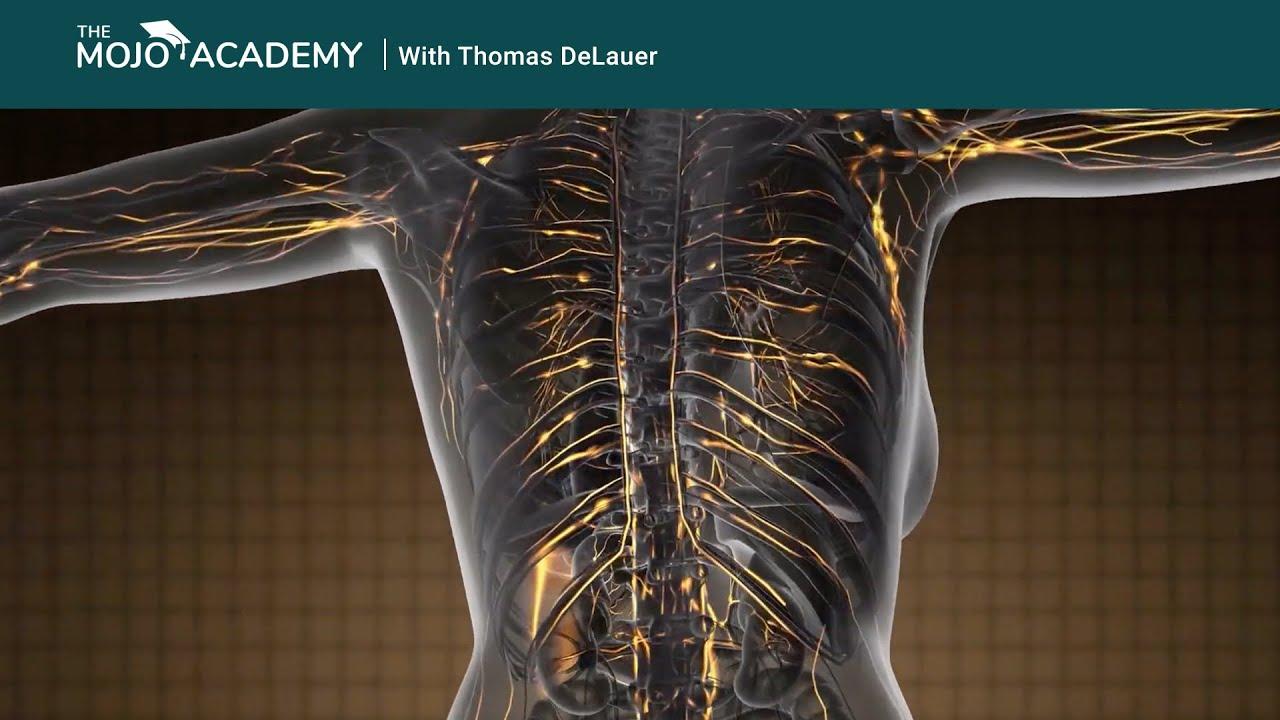 Fogyás Alacsony spermiumszám A férfiak elhízása befolyásolja a sperma minőségét