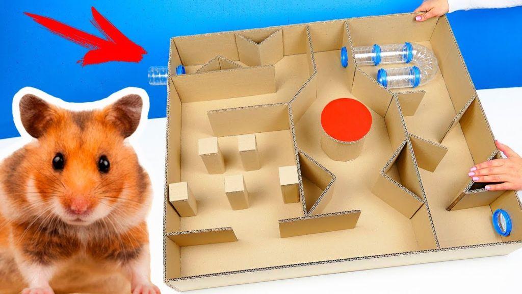 ~Hamster Heaven~: Fogkoptatás felsőfokon