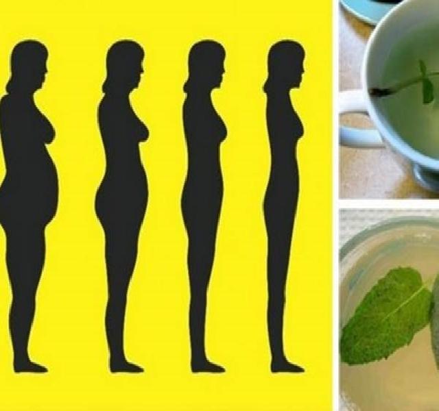 milyen gyógynövények segítenek a hasi zsír elvesztésében fogyás yog grammnál