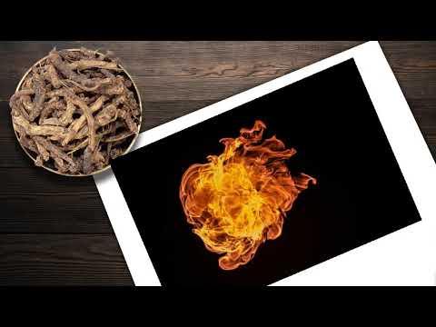 Füst éget zsírt, Mi a különbség a faszén és a bioszén között?