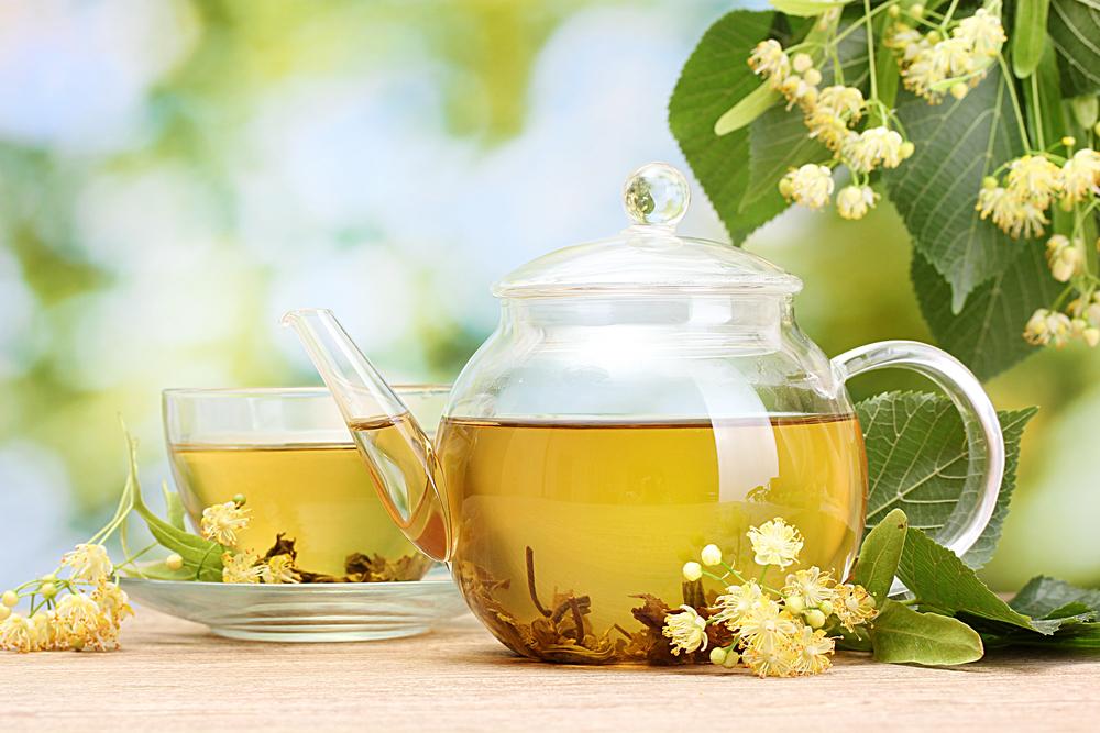 legjobb gyógynövények a gyors fogyáshoz