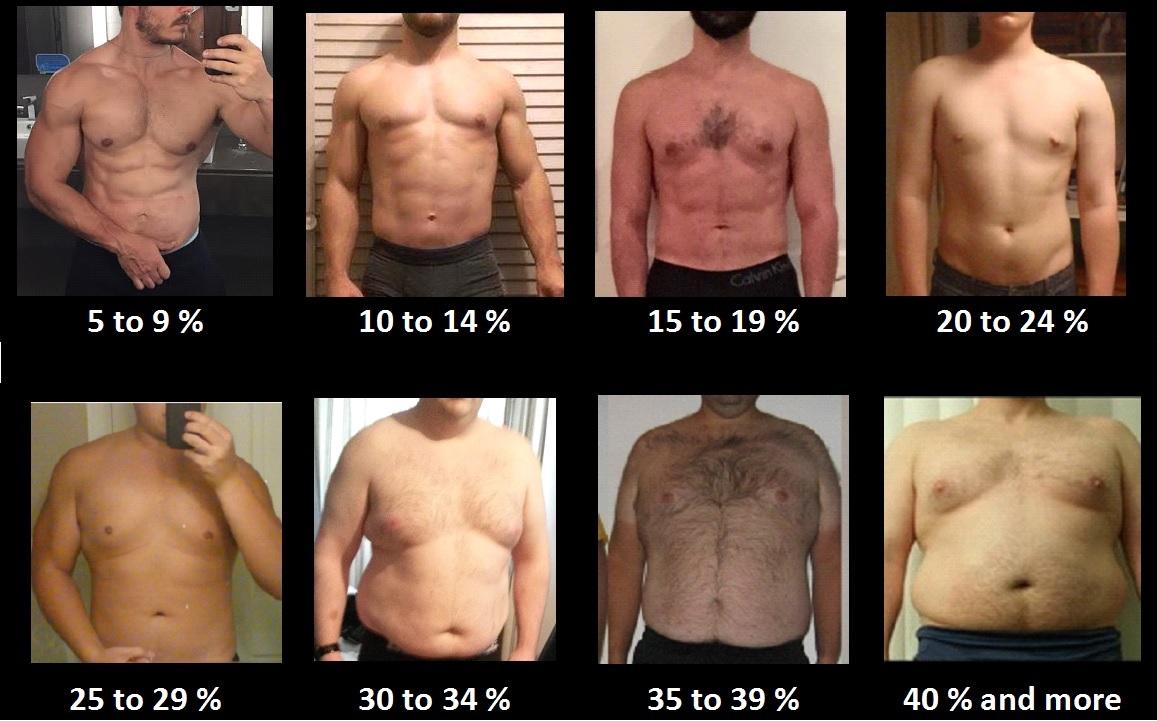 5 hét a testzsír csökkenése érdekében