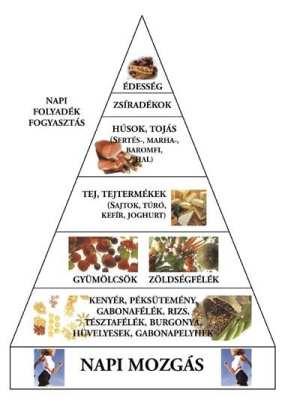 piramis meghatározza a zsírvesztést