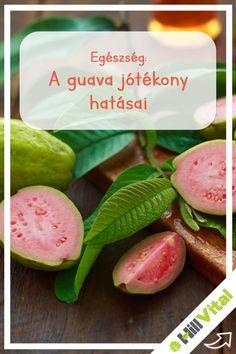 égeti-e a guava levelek a zsírt