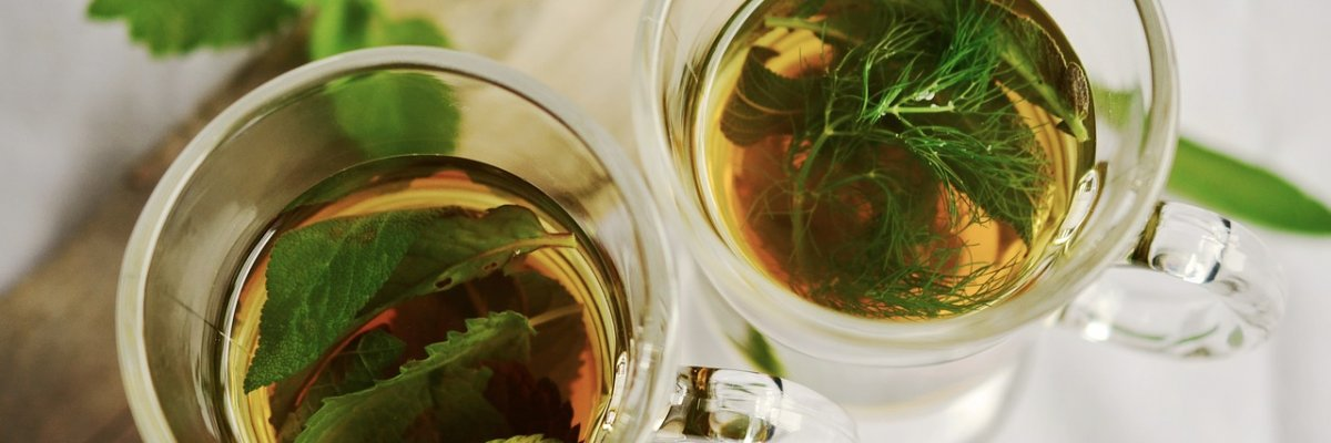 gyógynövények, amelyek segítenek a hasi zsírégetésben egészséges fogyás fontban hetente