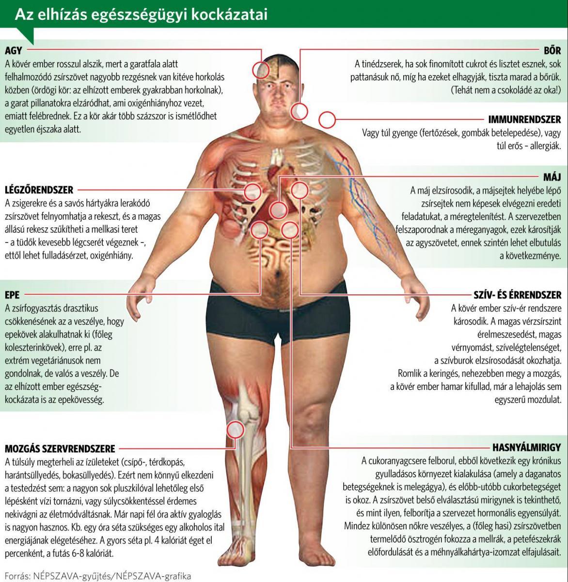 kövér veszteség ember