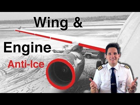 súlycsökkenés a pilóták számára fogyás holland mi