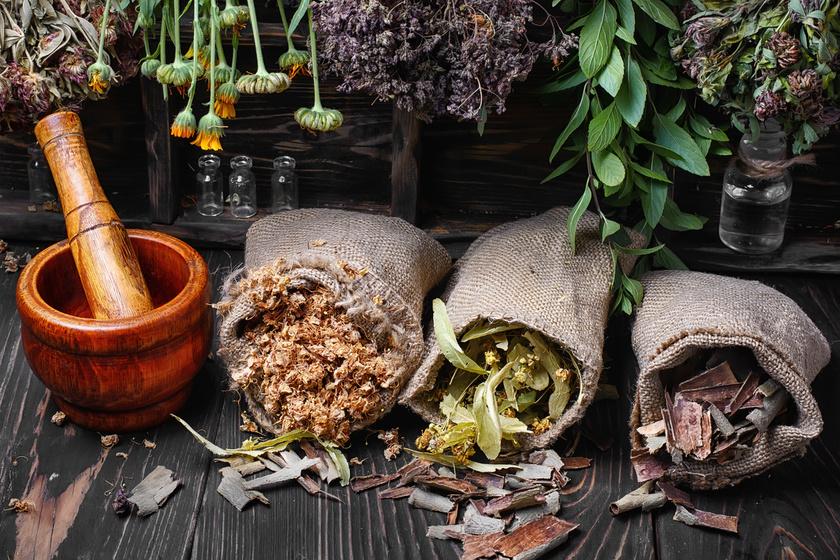 Öt gyógynövény, amelyek segítenek a fogyásban